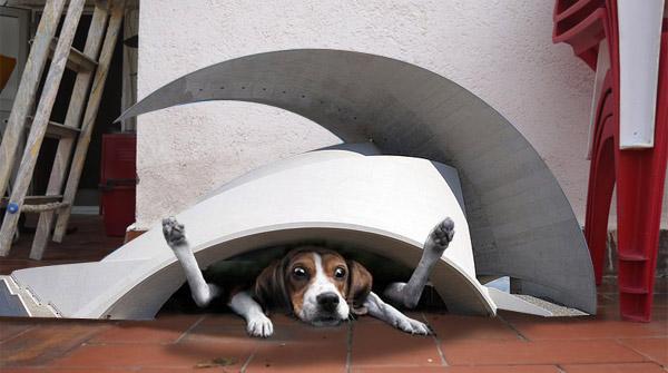 Perro atrapado en caseta de Santiago Calatrava