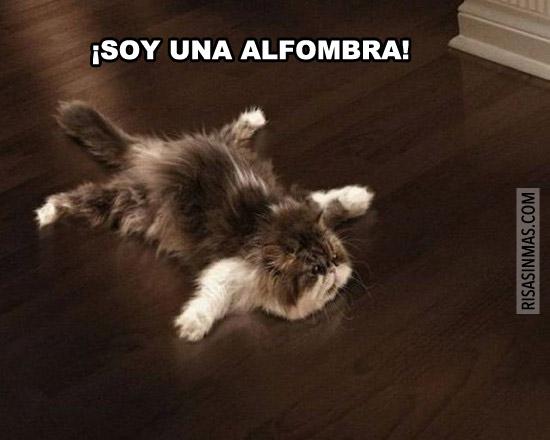 ¡Soy una alfombra!