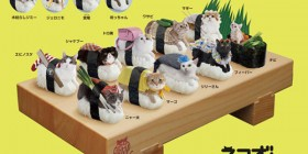 Sushi gatos
