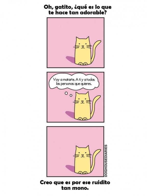 Un gatito adorable