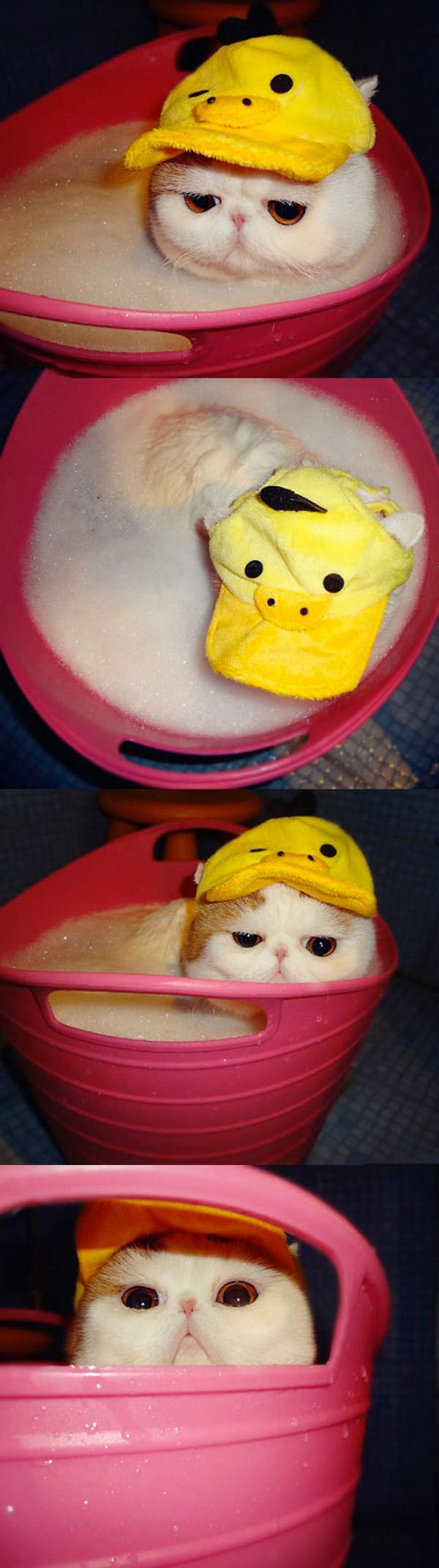 No me baño sin mi sombrero
