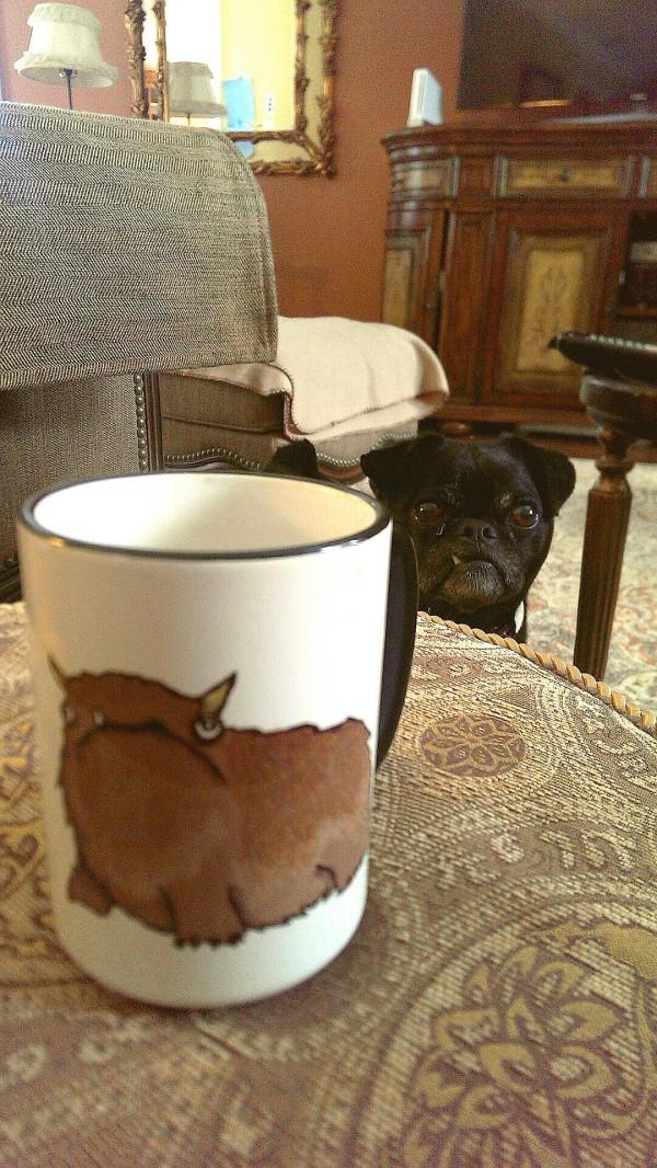 Parecidos razonables: Pug y dibujo