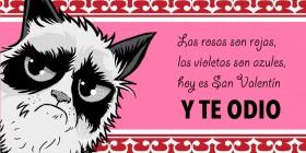 Tarjeta de San Valentín de Grumpy Cat
