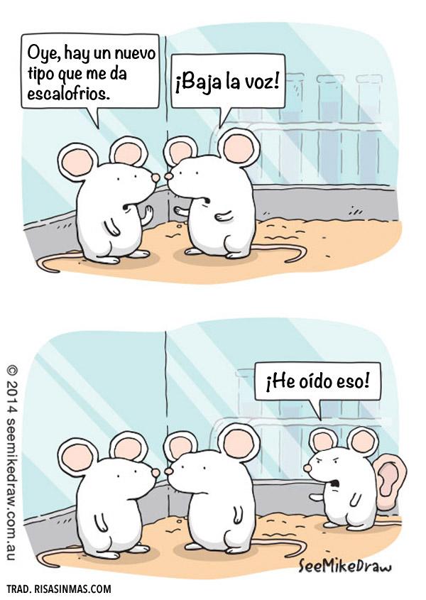 Un ratón un poco raro