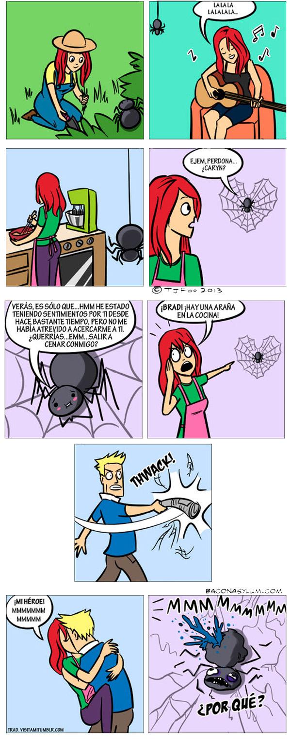 Una araña enamorada