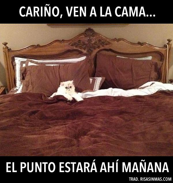 Ven a la cama