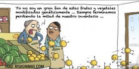 Frutas y vegetales modificados geneticamente