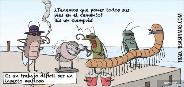 Insectos mafiosos