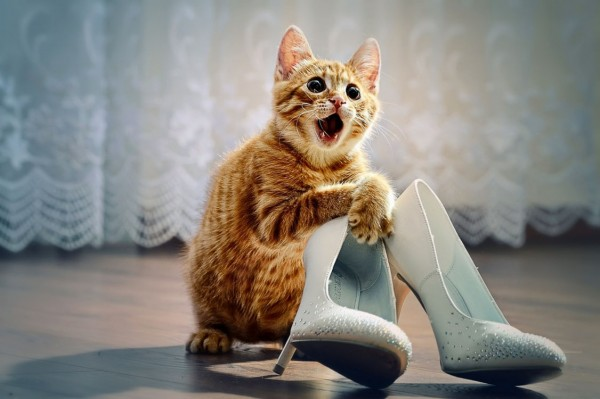 ¡Me encantan tus zapatos!