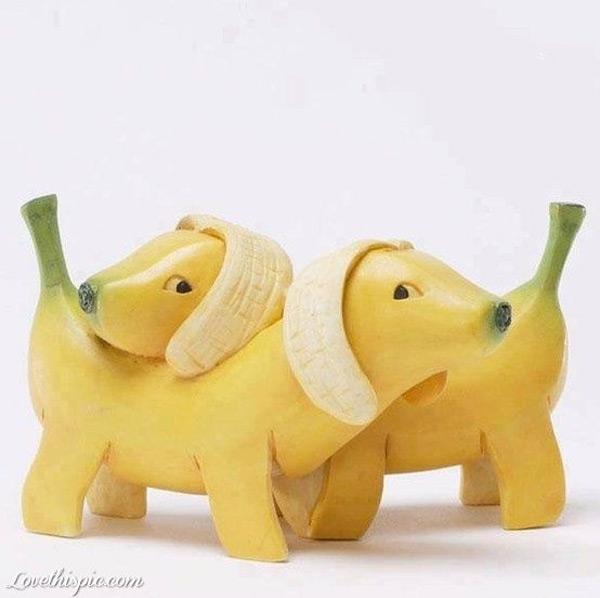 Perros plátano