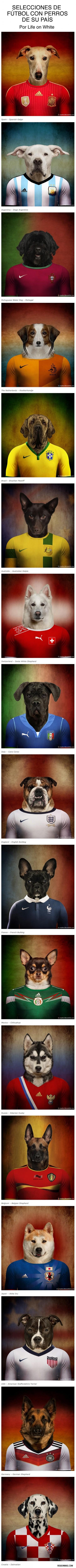 Selecciones de fútbol con perros de su país