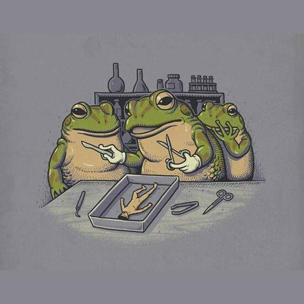 Universo paralelo de las ranas