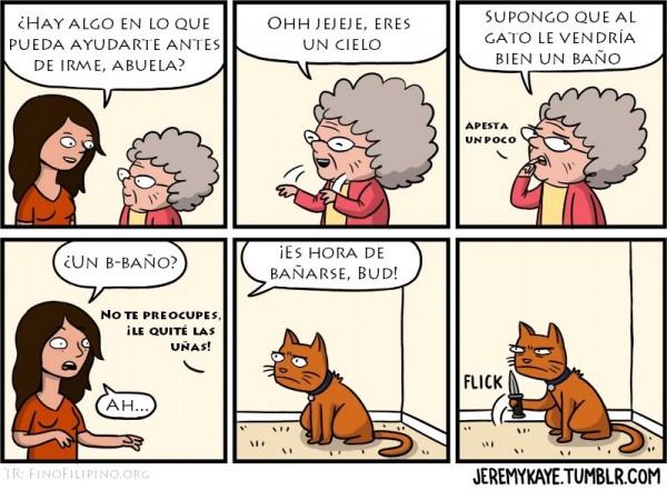 El baño del gato
