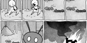 La lupa y las hormigas