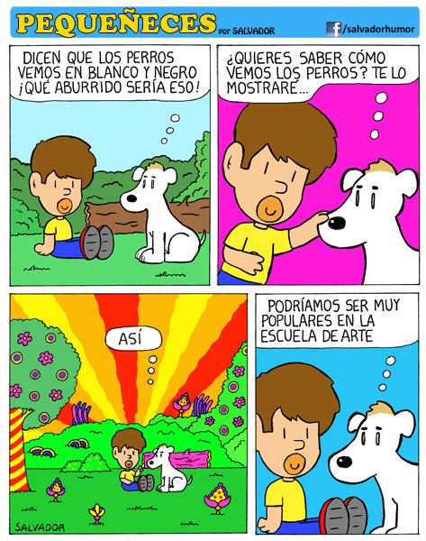 ¿Quieres saber cómo vemos los perros?