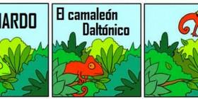 Leonardo, el camaleón daltónico