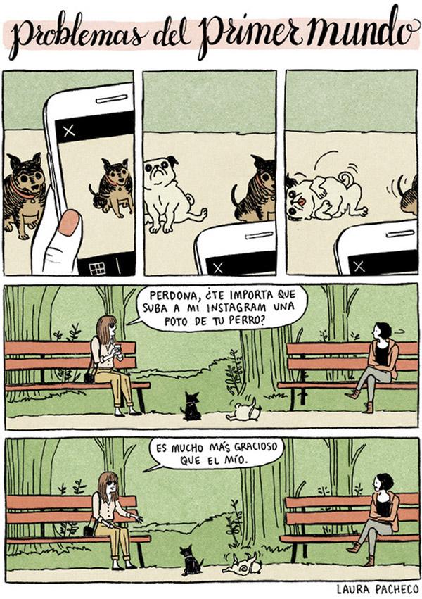 Problemas del primer mundo: la foto de tu perro