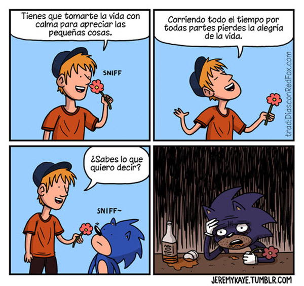 Relájate Sonic