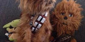 Mi perro Chewbacca