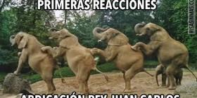 Reacciones de la abdicación del Rey Juan Carlos