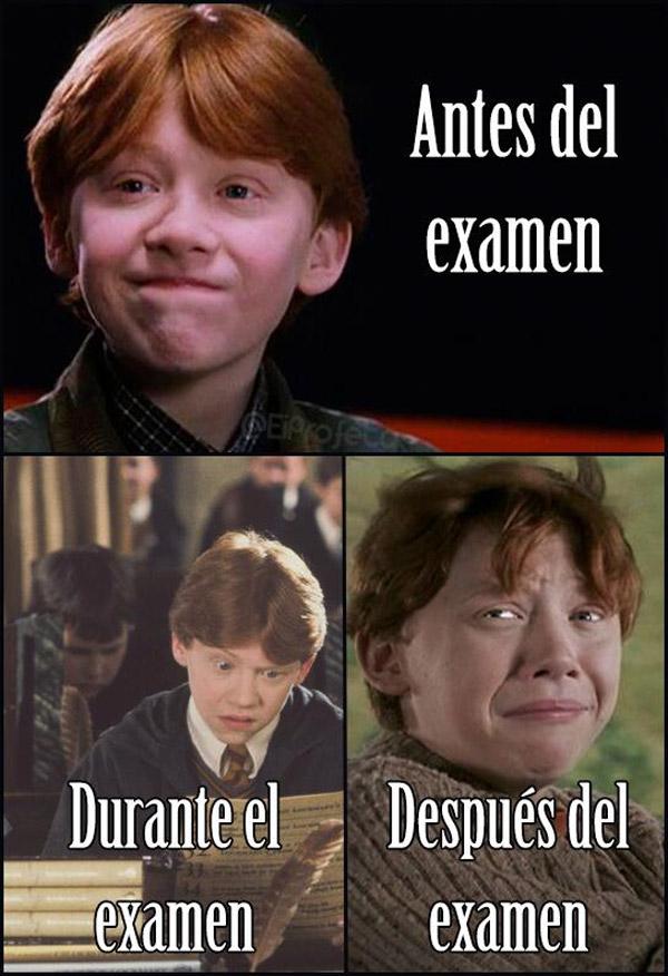 Las etapas de un examen