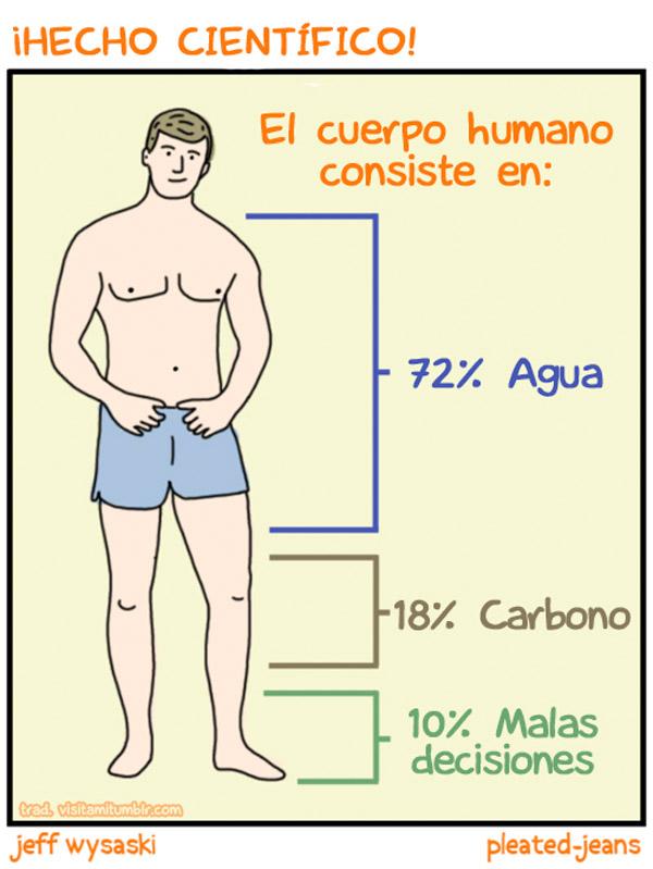 El cuerpo humano consiste en