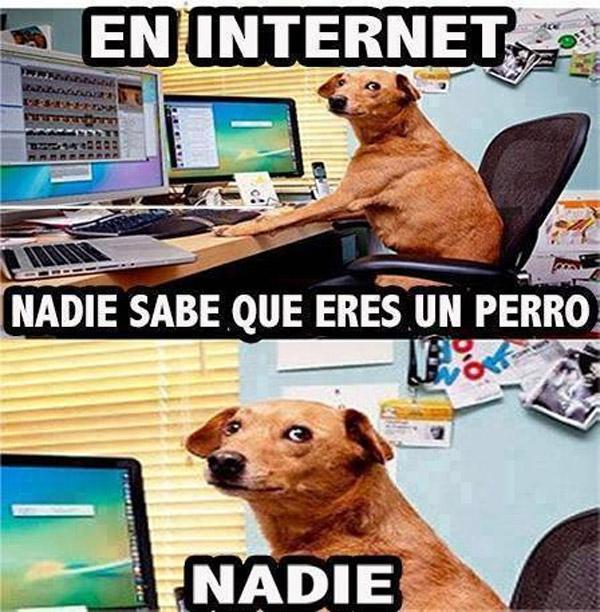 En Internet nadie sabe si eres un perro