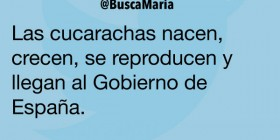 Cucarachas en el Gobierno de España