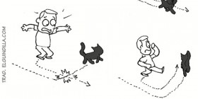 Gato negro en mi camino