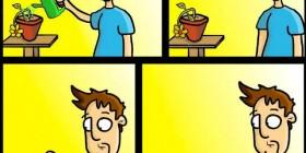 No te olvides de cuidar mis plantas