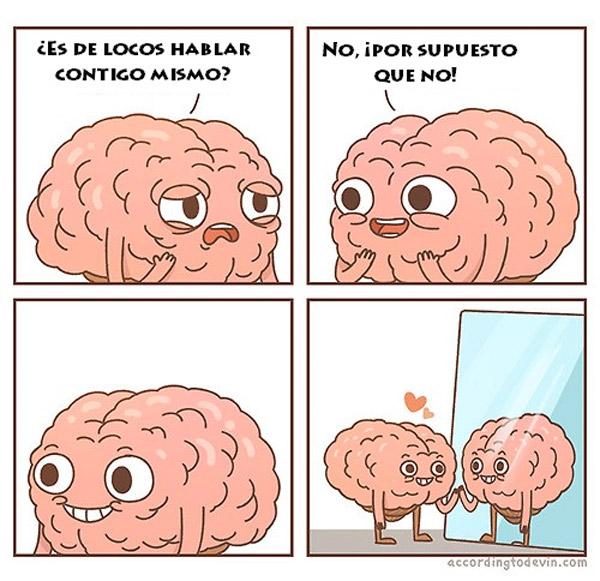 El cerebro está loco