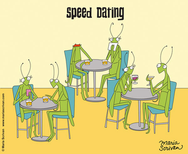 Mantis Speed Dating
