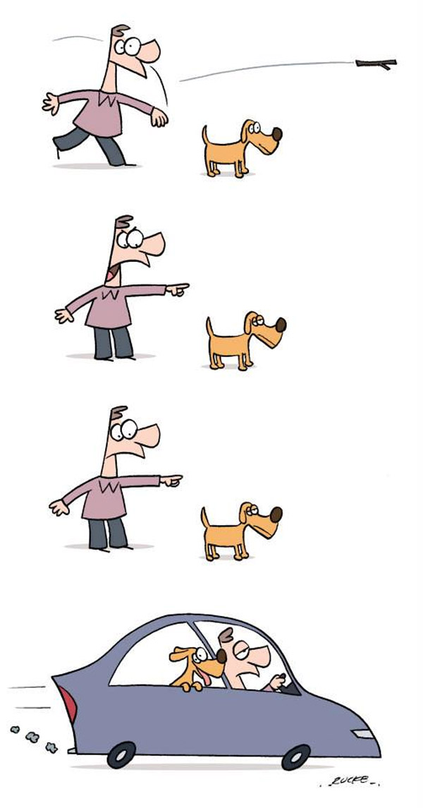 Perro vago