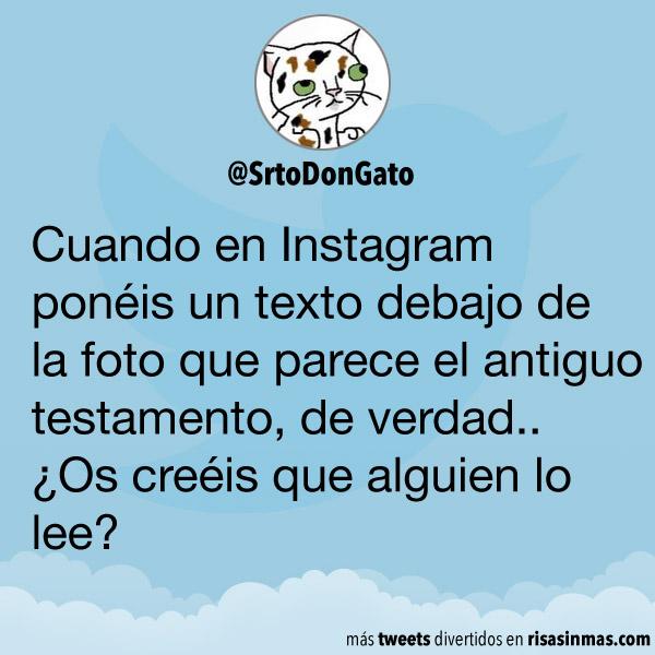 Texto en Instagram
