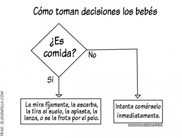 Cómo toman decisiones los bebés