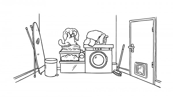 Simon's cat: la lavadora