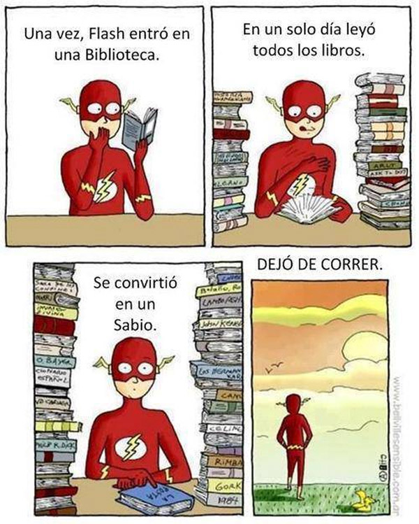 Flash dejó de correr