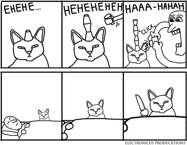 No hagas bromas al gato