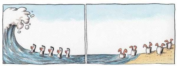 Patos al agua