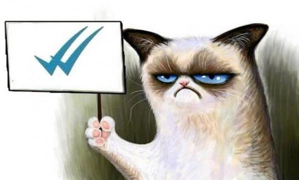 A Grumpy cat le gusta el doble check azul