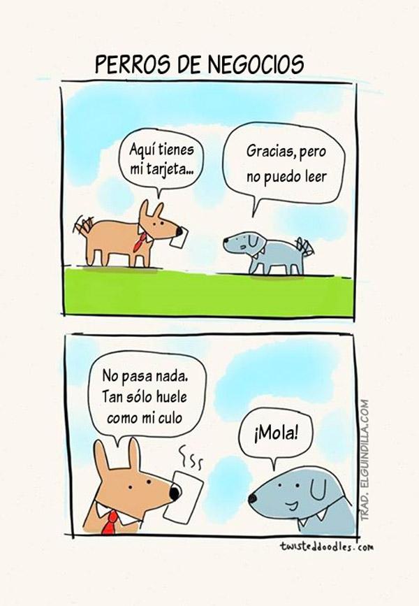 Perros de negocios