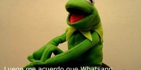 WhatsApp no me deja ignorarte