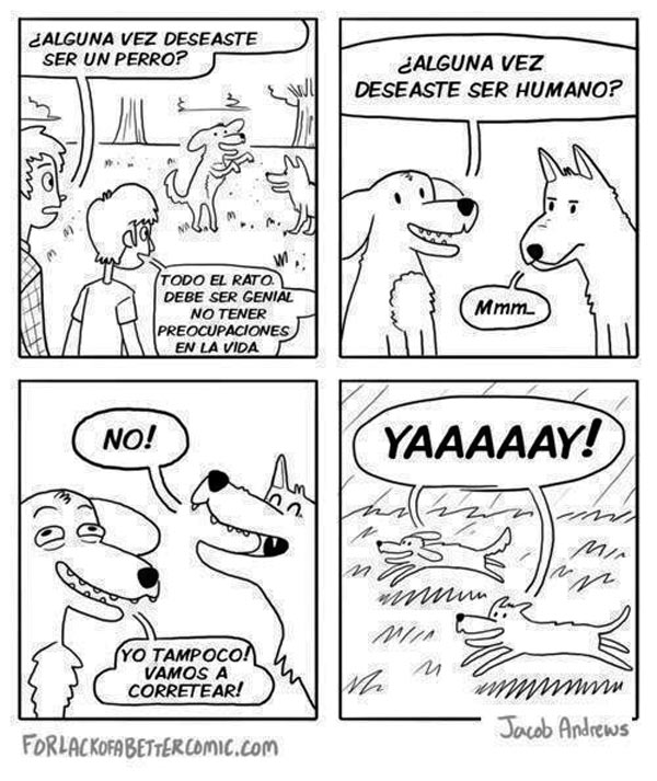 ¿Alguna vez deseaste ser perro?