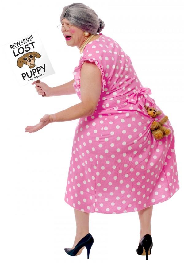 Disfraz: Perro perdido