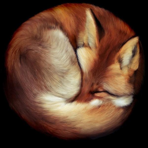 El verdadero Firefox
