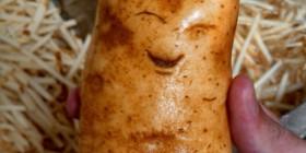 La patata más feliz