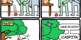 ¿Por qué los gatos hacen eso?