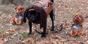 The Walking Pug: Michonne