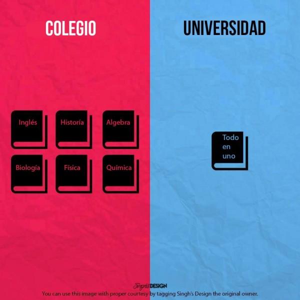 Colegio y Universidad: libros