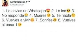 El ciclo del Whatsapp